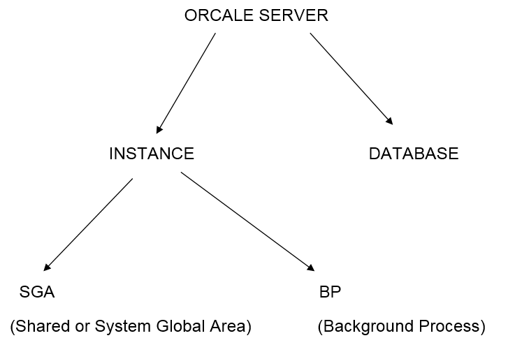 Oracle : Oracle Server Architecture