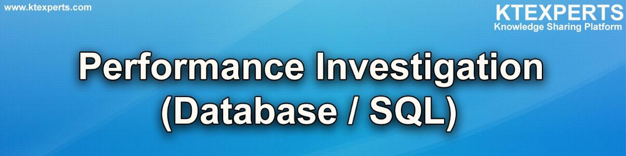 Performance Investigation Database